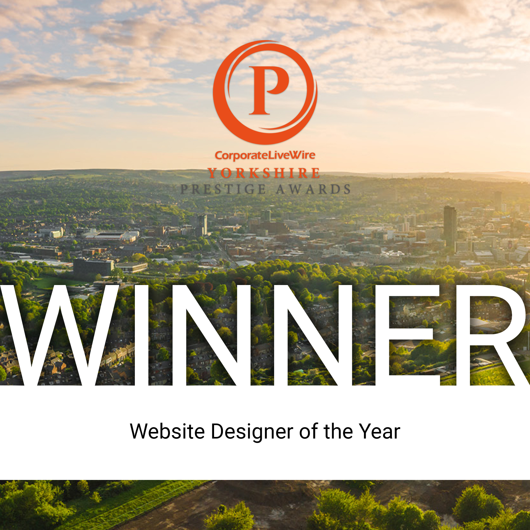 Website Designer of the Year